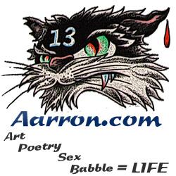 AARRON LAIDIG ART SITE