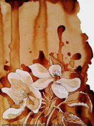 Blossoms in coffee and ink