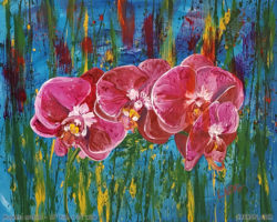 Painting of Magenta orchids by aarron Laidig